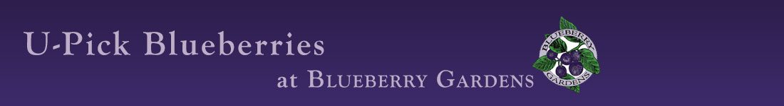 Blueberry Gardens U-Pick